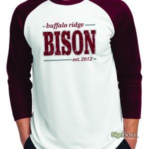 Baseball Shirts – Buffalo Ridge Elementary